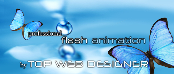 Use of Flash animation on your website
